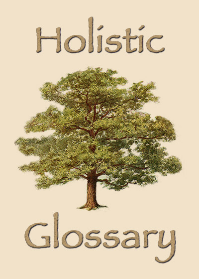 View Holistic Glossary